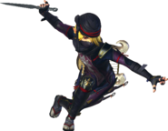 Hyrule Warriors Sheik Standard Outfit (Master Quest)