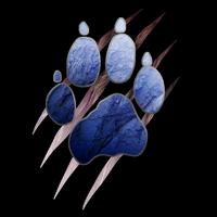 Wolfe Pack emblem