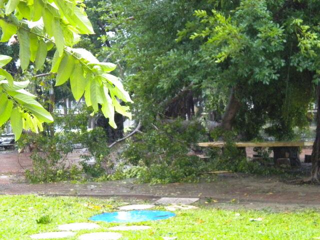 檔案:凡那比颱風的摧殘-南台科技大學9.jpg