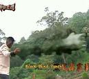 Black Wind Thunderbolt Punch