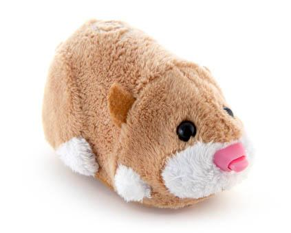 File:ZZP Pet MrSquiggles 0.jpg