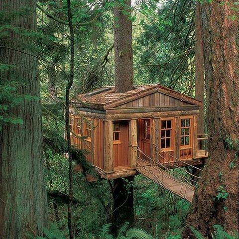 File:Tree House.jpg