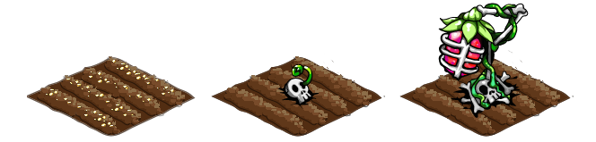 Skellyberry stages
