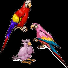 File:Scarlet Macaw.png