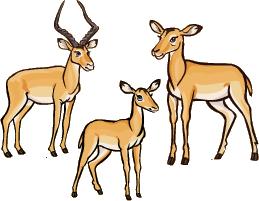 File:Impala.png