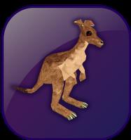 File:Kangaroo box.png