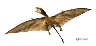 File:Peteinosaurus.jpeg