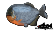 Red bellied piranha by budhiindra-d58jv94
