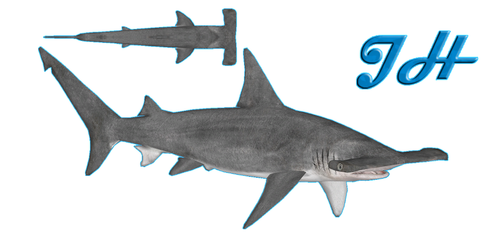 Image - Great Hammerhead Shark.png | Zoo Tycoon Wiki ...