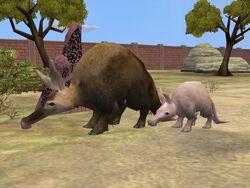 Zoo Tycoon 2 Aardvark