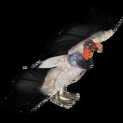 King Vulture (Eryel & Zerosvalmont)