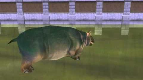 Ghost hippo in zoo tycoon