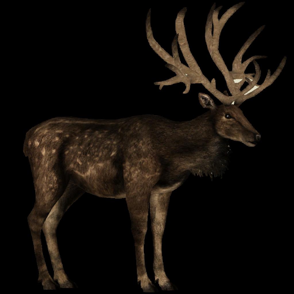 Red deer Dating - Red deer singles - Red deer chat at