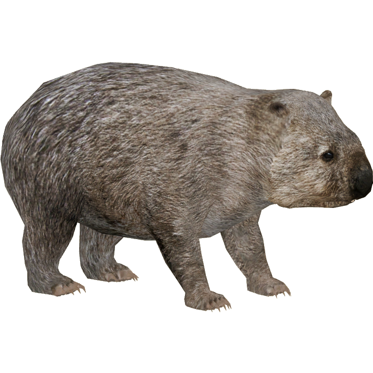Common Wombat Zerosvalmont Zt2 Download Library Wiki