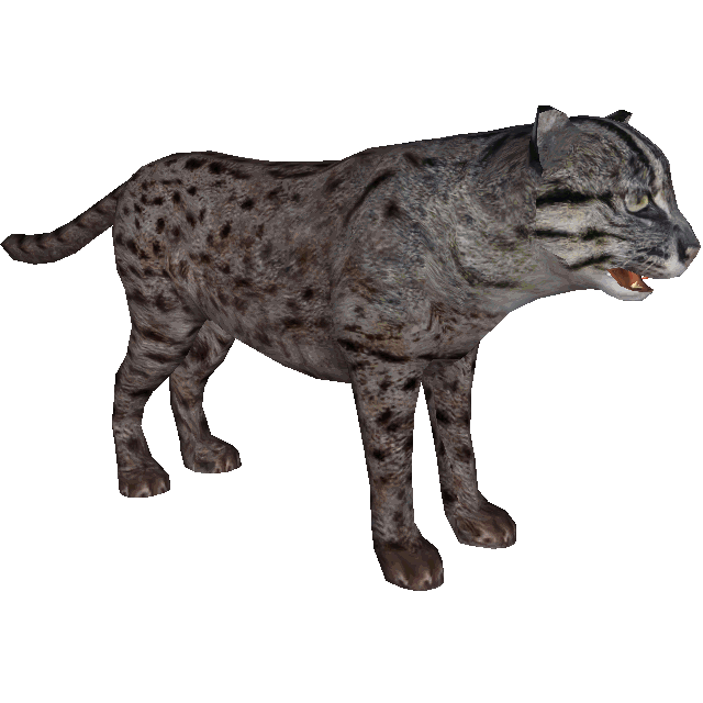 Fishing cat dutchdesigns zt2 download library wiki for Cat fishing 2