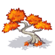 Red Japanese Maple-icon