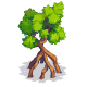 File:Mangrove-icon.png