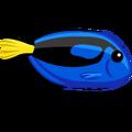 ColorfulFish Blue Tang-icon.png