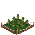 Pineapple Crop 3-icon.png