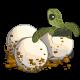 Sea Turtle Egg-icon