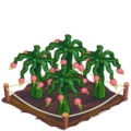 Dragonfruit Crop 4-icon.png