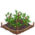 Passionfruit Crop 3-icon.png