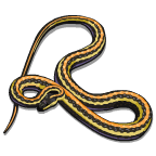 CreepyCrawlies Snake-icon