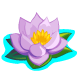 Purple Lotus-icon
