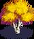 Yellow Birch-icon