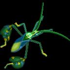 TropicalBugs Leafbug-icon