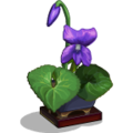 FetchingFlowers Wild Violet-icon