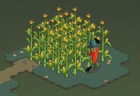 Farmer Ted-map1