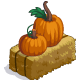 Pumpkin and Hay-icon