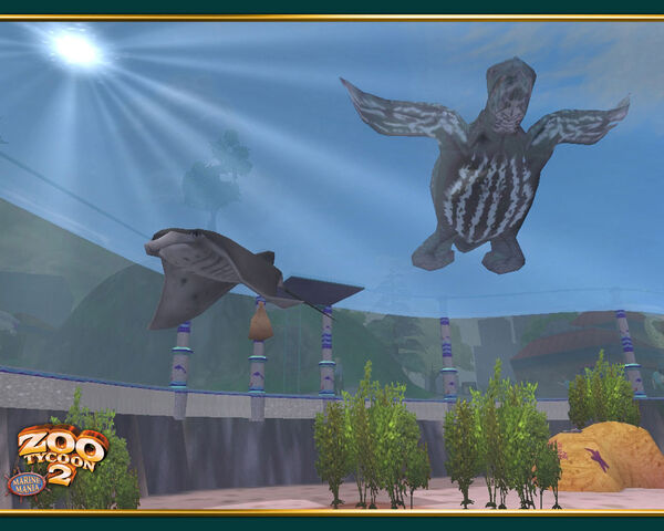 File:Manta Ray Leatherback Turtle wallpaper.jpg