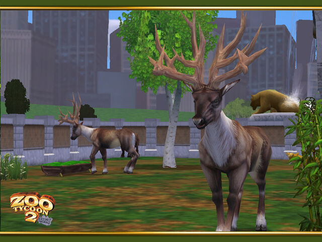 File:Bush-Antlered Deer wallpaper.jpg