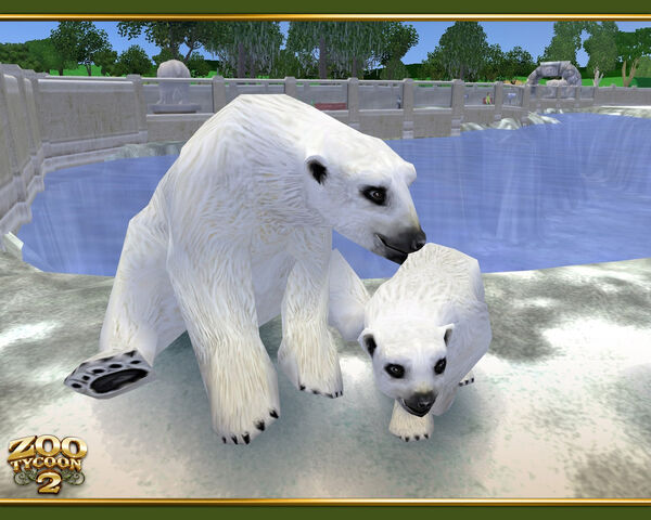 File:Polar Bear wallpaper.jpg