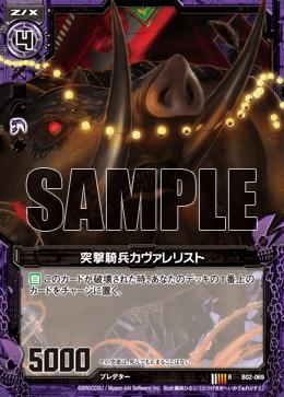 B02-069 Sample