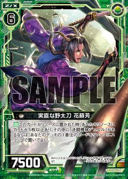 E05-029 Sample