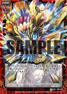 B05-017 Sample