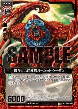 B04-006 Sample