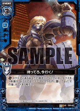 C03-011 Sample