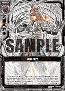 P09-009 Sample
